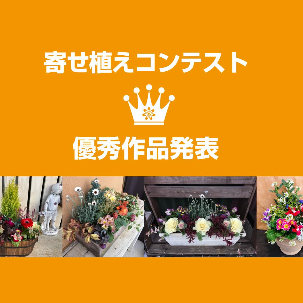 寄せ植えコンテスト優秀作品発表!